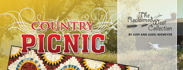 Country Picnic Banner